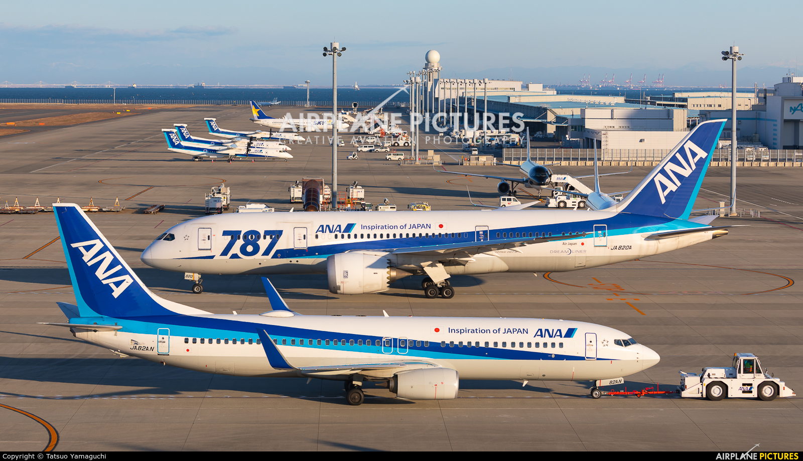 ANA - All Nippon Airways JA820A aircraft at Chubu Centrair Intl