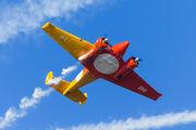 PT-DHI - Esquadrilha Oi Beechcraft 18 Twin Beech S series aircraft