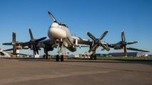 RF-94123 - Russia - Air Force Tupolev Tu-95MS aircraft