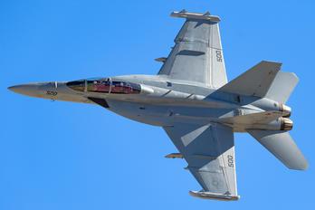 169145 - USA - Navy Boeing EA-18G Growler