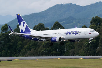 HP-1536CMP - Wingo Boeing 737-800
