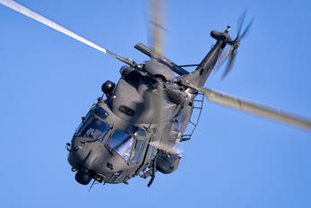 MM81545 - Italy - Army NH Industries NH-90 TTH