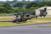 4053 - France - Army Aerospatiale SA-341 / 342 Gazelle (all models) aircraft
