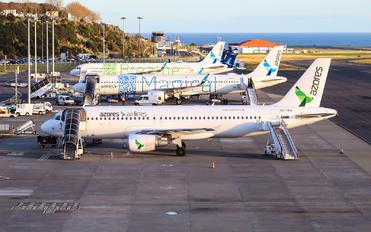 - - Azores Airlines - Airport Overview - Overall View