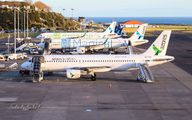 - - Azores Airlines - Airport Overview - Overall View aircraft