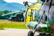 0841 - Slovakia -  Air Force Mil Mi-17 aircraft