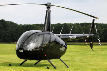 OO-PMP - Paramount Helicopters Robinson R44 Raven I