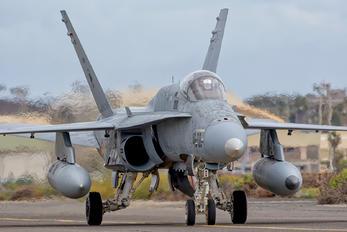 C.15-80 - Spain - Air Force McDonnell Douglas F/A-18A Hornet