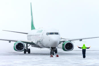 EZ-A019 - Turkmenistan Airlines Boeing 737-800