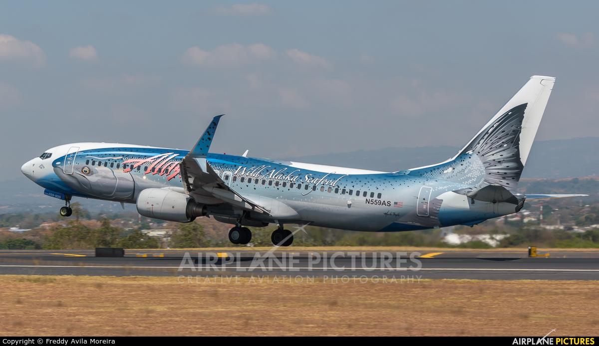 Alaska Airlines N559AS aircraft at San Jose - Juan Santamaría Intl