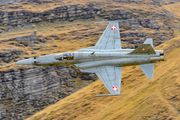 J-3098 - Switzerland - Air Force Northrop F-5E Tiger II aircraft