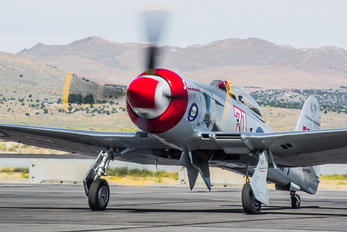 N71GB - Private Hawker Sea Fury FB.10