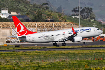 TC-JVY - Turkish Airlines Boeing 737-800