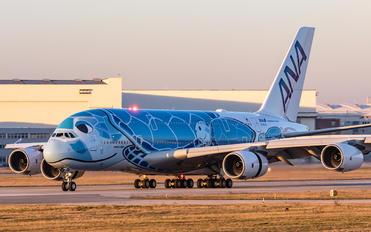 JA381A - ANA - All Nippon Airways Airbus A380