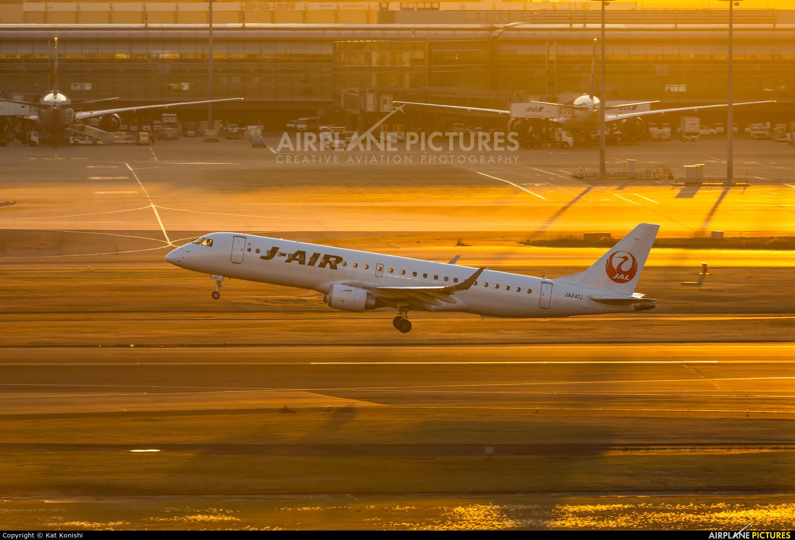 JAL - Japan Airlines JA247J aircraft at Tokyo - Haneda Intl