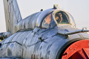 9015 - Poland - Air Force Mikoyan-Gurevich MiG-21MF aircraft