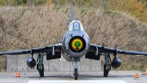 Poland - Air Force 305 image