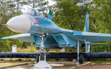 22 - Russia - Air Force Sukhoi Su-27