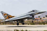 C.16-73 - Spain - Air Force Eurofighter Typhoon aircraft