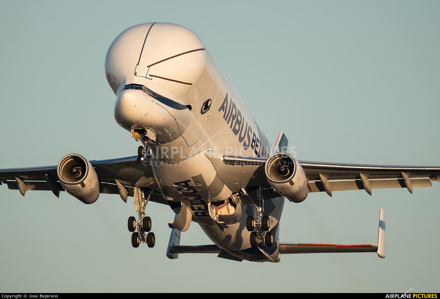 Airbus Transport International F-WBXL aircraft at Seville - San Pablo