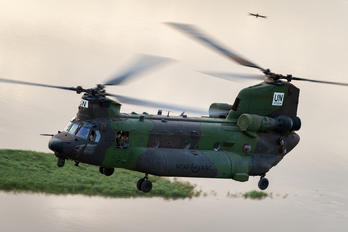 147304 - Canada - Air Force Boeing CH-147F Chinook