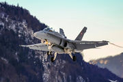 J-5015 - Switzerland - Air Force McDonnell Douglas F/A-18C Hornet aircraft