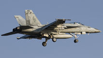 166911 - USA - Navy Boeing F/A-18E Super Hornet aircraft
