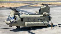 10-08856 - USA - Army Boeing CH-47F Chinook aircraft