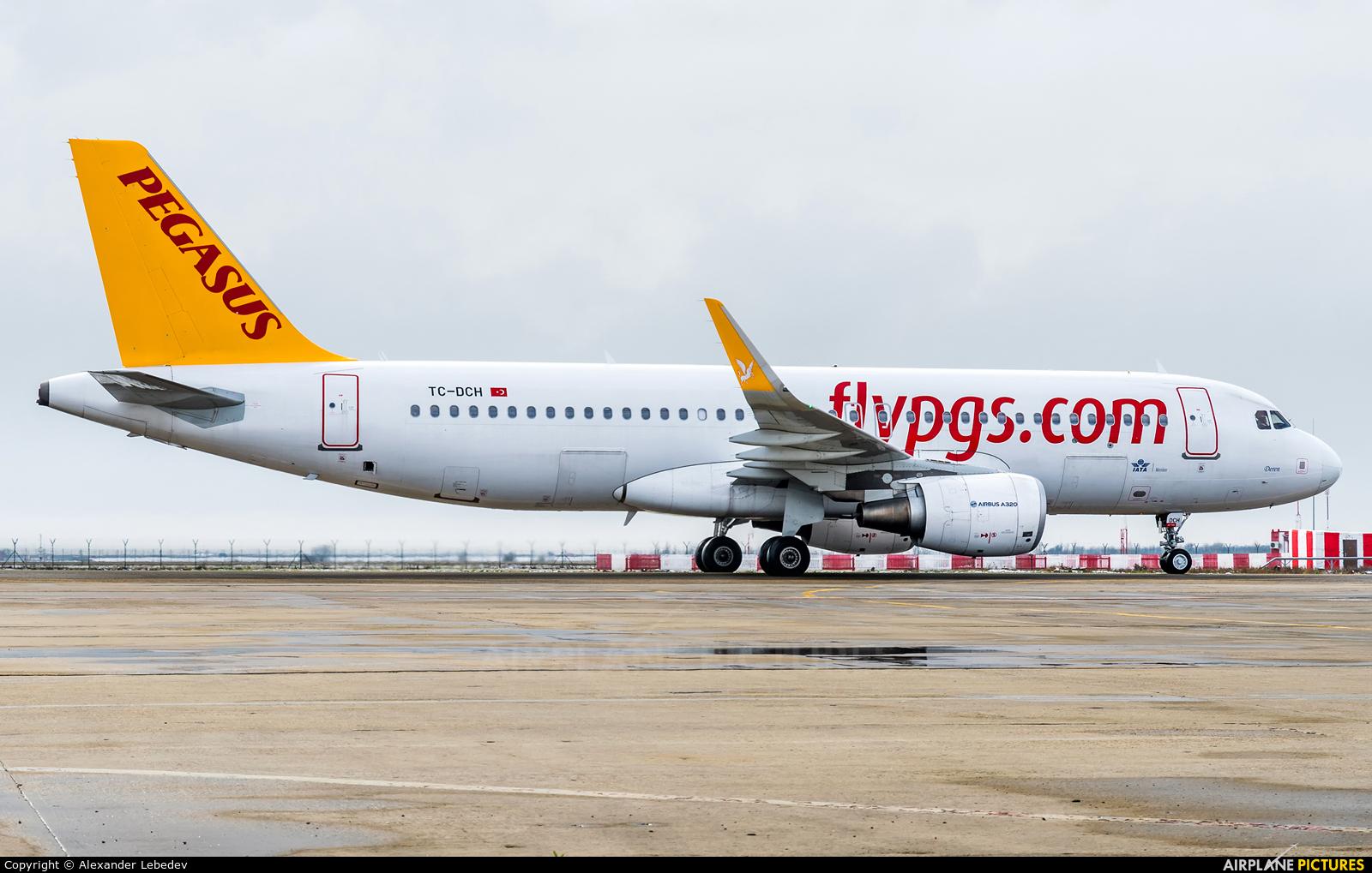 Pegasus TC-DCH aircraft at Krasnodar