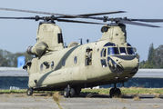 10-08856 - USA - Army Boeing CH-47F Chinook aircraft
