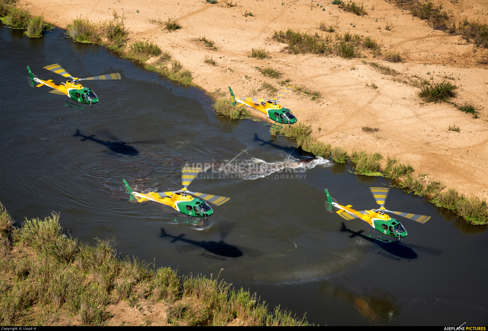 South Africa National Parks Air Wing ZS-OXK aircraft at