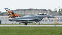14-31 - Spain - Air Force Eurofighter Typhoon aircraft
