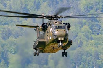 84+60 - Germany - Army Sikorsky CH-53G Sea Stallion