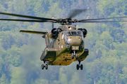 84+60 - Germany - Air Force Sikorsky CH-53G Sea Stallion aircraft