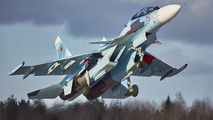 79 - Russia - Air Force Sukhoi Su-30SM aircraft