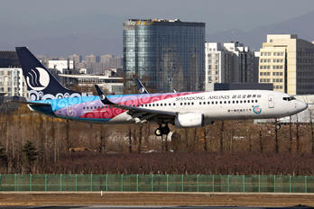 B-5786 - Shandong Airlines  Boeing 737-800