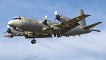 14809 - Portugal - Air Force Lockheed P-3C Orion aircraft