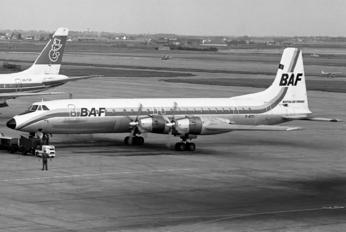G-ATZI - British Air Ferries  BAF Canadair CL-44-0
