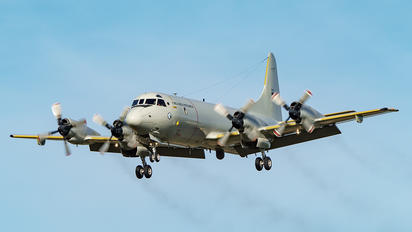 14509 - Portugal - Air Force Lockheed P-3C Orion