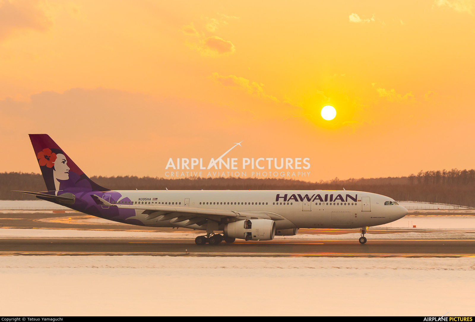 Hawaiian Airlines N395HA aircraft at New Chitose