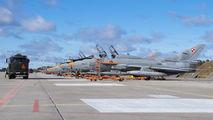 Poland - Air Force 310 image