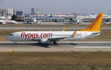TC-IZG - Pegasus Boeing 737-800