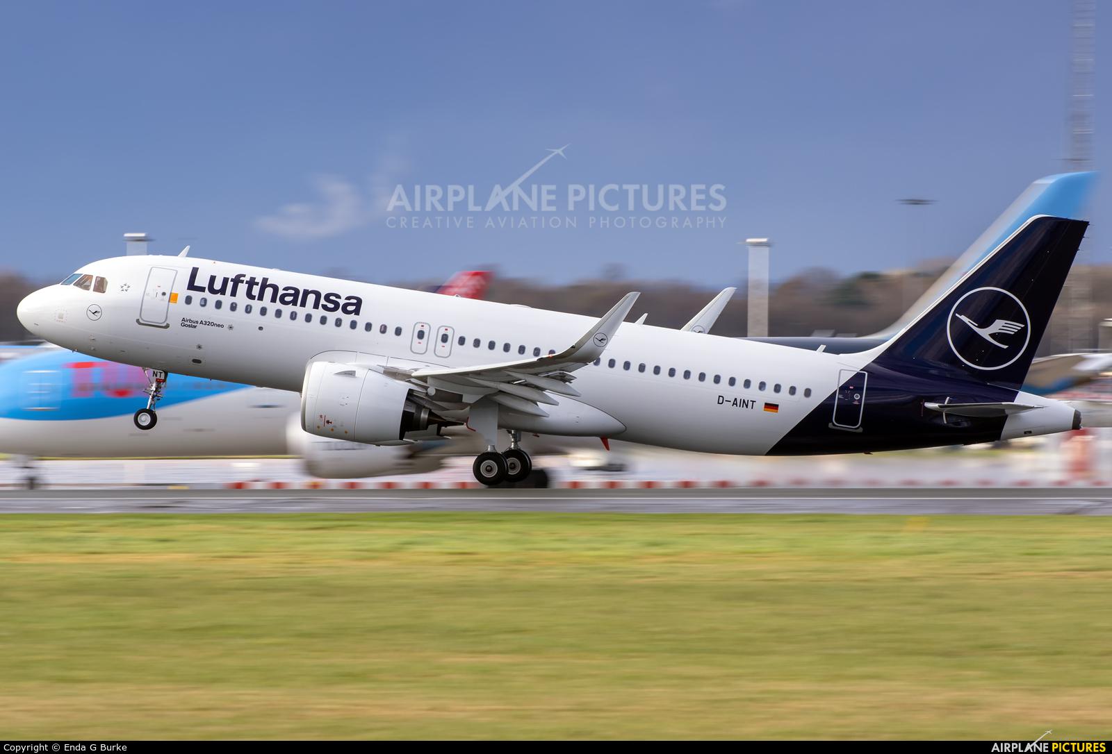 Lufthansa D-AINT aircraft at Manchester