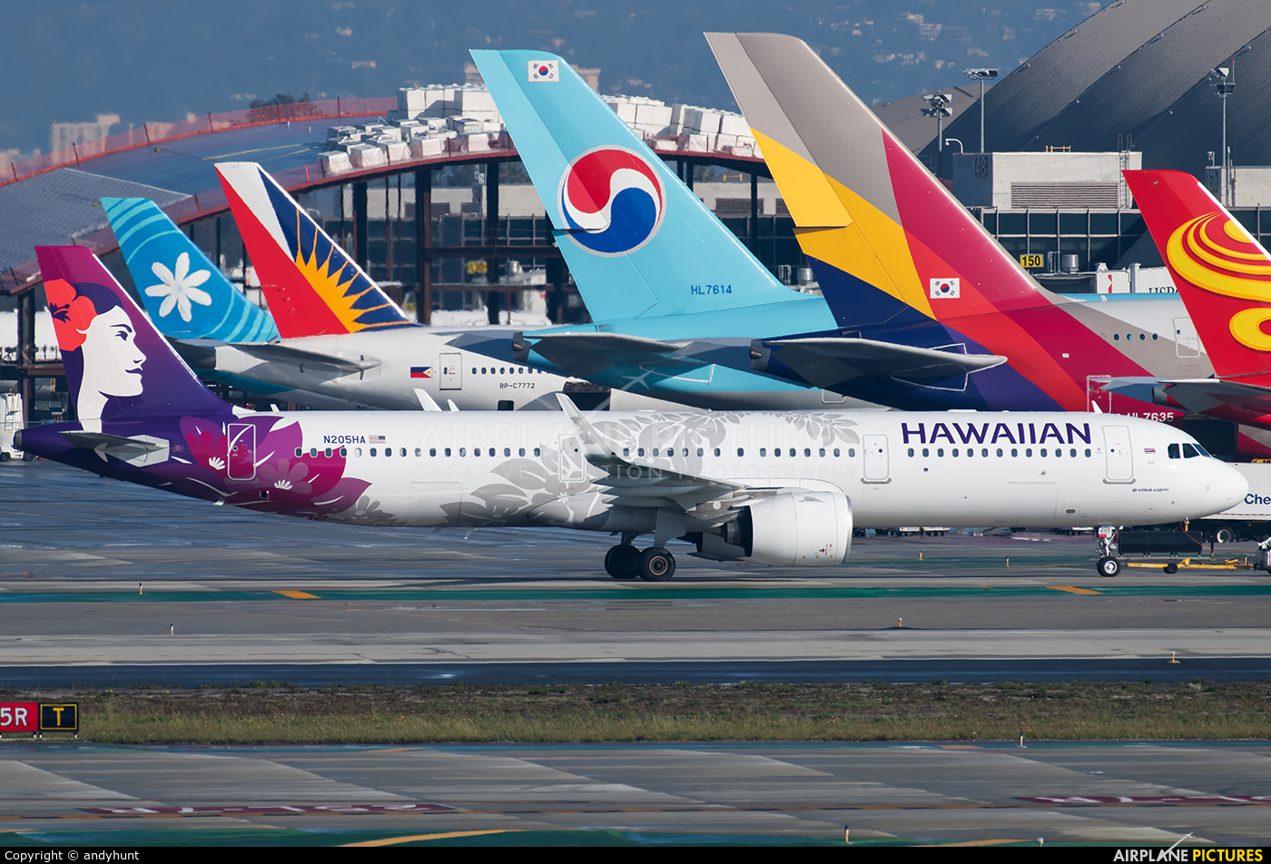 Hawaiian Airlines N205HA aircraft at Los Angeles Intl