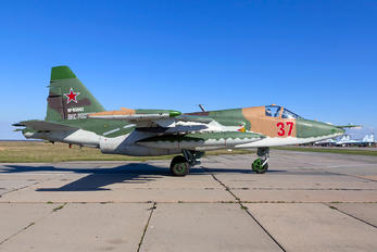 37 - Russia - Air Force Sukhoi Su-25