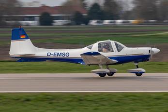 D-EMSG - Private Grob G115 Tutor T.1 / Heron