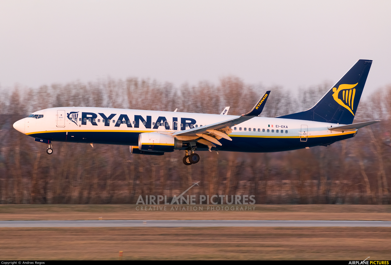 Ryanair EI-EKA aircraft at Budapest Ferenc Liszt International Airport