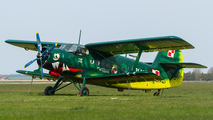 SP-MLP - Private Antonov An-2 aircraft