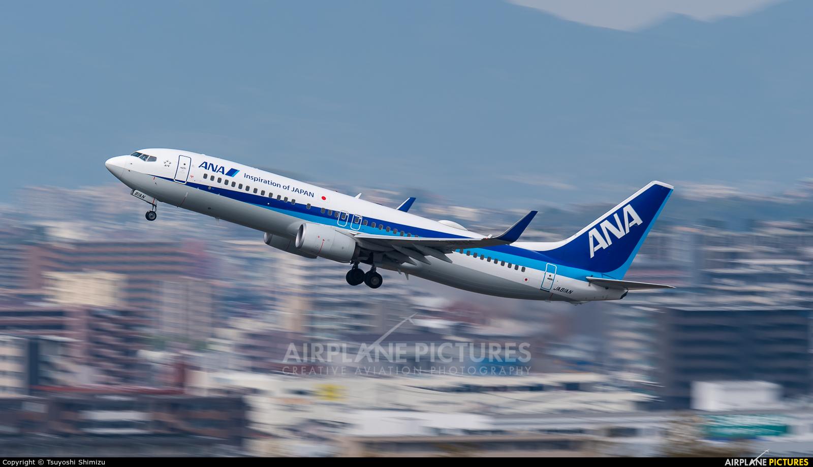 ANA - All Nippon Airways JA81AN aircraft at Fukuoka