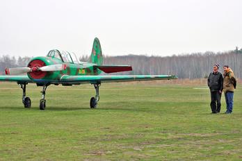 RA-1295G - DOSAAF / ROSTO Yakovlev Yak-52